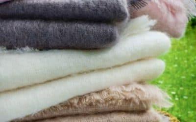 L'hiver approche, quelle couverture choisir?